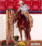 Judy Rich and Hit Invitation, 2006 World Trail Debut