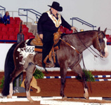 JB Fine N Dandy, Debbie Ryan 2003 World Top 10 Trail